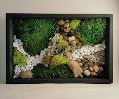 Items similar to Wall Moss Art Wall Garden Desk Top Art on Etsy Moss Wall Art, Moss Art, Garden Wall Art, Moss Garden, Art Desk, Garden Terrarium, Wood Planters, Inspiration Wall, Plant Wall