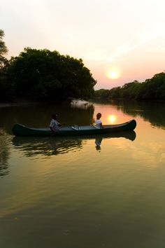 Safaris in Zambia Lets Get Lost, Tbs, Safari, Destinations, To Go, The Incredibles, School, World, Nature