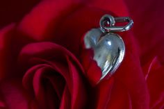 https://flic.kr/p/S1RW2f   Macro Monday 2017-02-10 (5D_32A4941)   A little Rose Gold locket of Adrienne's sitting on one of her beautiful Begonia flowers, which is such a gorgeous red colour.  Happy Valentine's Day for tomorrow to my darling wife, who I love more than anything, and Happy Macro Monday to everyone else!