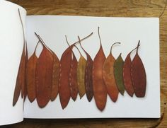 A tactile landscape 80 page book forming a photographic record of Alice's leaf stitching experiments. Leaf Stitching is part of an ongoing e.
