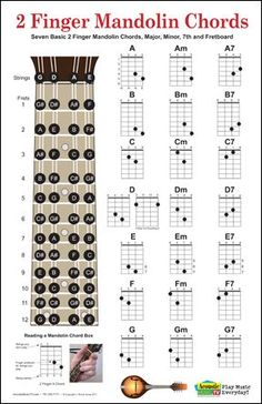 Chord fingering charts for 2 finger mandolin chords, includes major, minor and seventh chords for the seven major chords. Also has a fretboard with all of the notes marked. $12.75