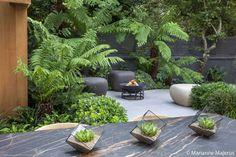 Calm in the City - Garden Design & Landscaping Project Garden Design London, Tropical Garden Design, Back Garden Design, Modern Garden Design, London Garden, Small Garden Area Ideas, Small City Garden, Small Backyard Landscaping, Modern Landscaping