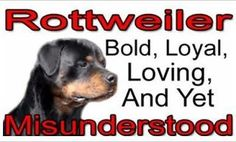 Yeah.....I almost couldn't get insurance on my house because I have a Rottweiler.  They are not aggressive dogs....only when they need to protect their family.
