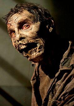 """The Walking Dead Season 4 Episode 15 """"Us"""" Walker"""