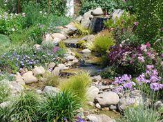 from yorkscape garden gallery. pond margin ideas