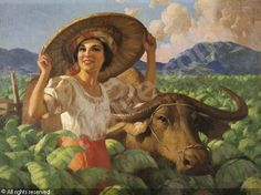 Woman in the tobacco field