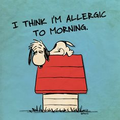 I THINK I'M ALLERGIC TO MORNING MORE Cartoon & TV images http://cartoongraphics.blogspot.com/ ~And on Facebook~ https://www.facebook.com/dreamontoyz  Peanuts ~ Tired Snoopy on top of his dog house #Greeting #Quote #Saying