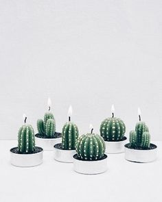 Cacti candles cause it's #Friyay! #UNIQFINDinspo