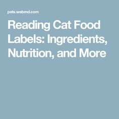 Reading Cat Food Labels: Ingredients, Nutrition, and More
