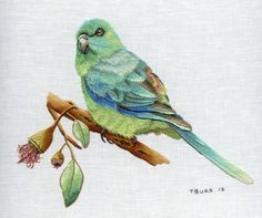 Red Rumped Parrot - Beautiful embroidery by Trish Burr
