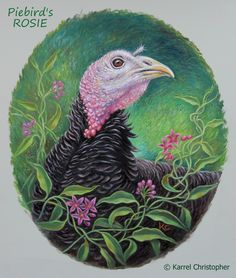"Turkey Hen ""ROSIE"" ~ oil on board portrait by © Karrel Christopher ~ created for Piebird Vegan Farm Sanctuary ~ 8"" x 10"" designed for oval frame ~ http://karrelchristopher.com/"