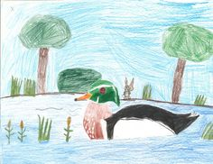 The 2013 Florida Junior Duck Stamp of Livia VanWowern, 9, honorable mention in Group 1, grades K-3. DDWS photo