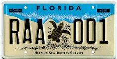 フロリダのナンバー・プレート ワシントン通信 3.0~地方公務員から転身した国際公務員のblog