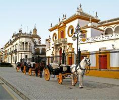 """Hola Queridas!Hoy un post sin palabras...bueno sólo estas:Cuando llegamos nos estaban esperando los Del Río...(bueno: eso o son de cera...qué también pue""""ser...jjjjjjjiiiii... Places Ive Been, Places To Visit, Horse Carriage Rides, Portugal, Seville Spain, Andalusia Spain, Most Beautiful Cities, Best Cities, Spain Travel"""