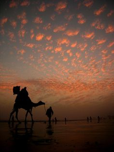 Pakistan. The Camel's Way Home , beach of Karachi | Flickr: By Ali Khurshid