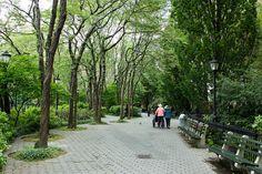 Battery Park Grove by Dan Nguyen @ New York City, via Flickr