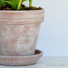 Paint pots, Concrete planters and Cement on Pinterest