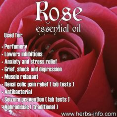 ❤ Rose essential oil is also used in aromatherapy. It is said that essential oil of rose aids relaxation and helps soothe away anxiety. ❤