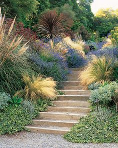 The first rule of stair-side plants: What grows by your feet gets extra attention. The etched leaves of Hedera helix 'Needlepoint,' the gold-plumed Stipa tenuissima, and Lavandula 'Grosso,' which releases its scent when rubbed, all reward close scrutiny. Hillside Garden, Hillside Landscaping, Garden Paths, Sloped Garden, Herb Garden, Garden Beds, Landscaping Ideas, Garden Stairs, Garden Arches