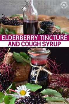 Elderberry Tincture and Cough Syrup - This is a study on the creating the elderberry tincture. It is perfect for this time of year because we are fast looking at the incredible berry coming into season. You will be able to find this guy very easily and harvesting it is a breeze as well. #elderberry #elderberrysyrup #elderberrytincture #allnatural #naturalremedy #homeremedy #remedy