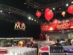 D23 Expo 2015 – Treasure Trove of Collectibles! | Disney Nerds