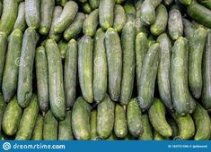 Organic Cucumbers Freshly Harvested On A Market Counter Stock Photo - Image of fresh, product: 183751596 Farmer, Counter, Harvest, Organic, Stock Photos, Fresh, Marketing, Image, Farmers