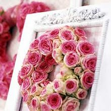 pink roses in a white frame