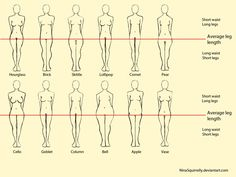 12 realistic woman body shape chart by ~NinaSquirrelly on deviantART