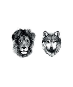 Here is a wolf and lion tattoo. I would love the wolf one.