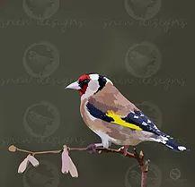 snewdesigns | Digital | Goldfinch Goldfinch, Birds, Digital, Animals, Animales, Animaux, Bird, Animal, Animais