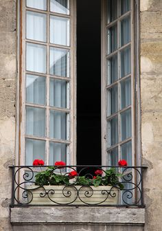 Window and flowers, Paris | Flickr - Photo Sharing!