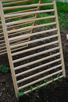Repurposed crib rails as a trellis for vertical gardening.