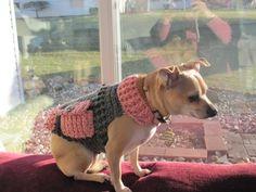 crochet doggie sweater http://www.premieryarns.com/App_Themes/premieryarns.com/pdfs/P00142.pdf
