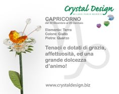 #Capricorno #crystaldesign