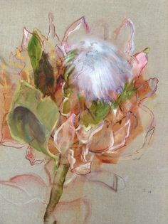 Anne Cleveland's Protea on Linen - gorgeous Anne is an amazing artist - I have had the pleasure of attening several workshops with her. Flower Painting Canvas, Oil Painting Flowers, Abstract Flowers, Watercolor Flowers, Painting & Drawing, Watercolor Paintings, Watercolour, Protea Art, Nature Sketch