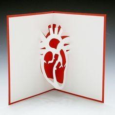 Susannah Goodyear: Anatomical Heart Card