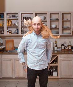 Hilarious, adorable photo series shows men with their cats
