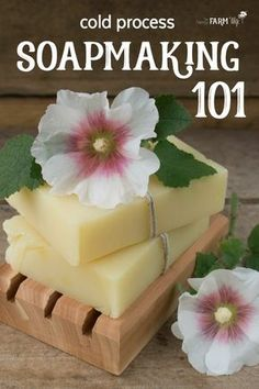 Soapmaking 101 - Cold Process Soap: This in-depth tutorial teaches you how to make soap from scratch. Soapmaking 101 - Cold Process Soap: This in-depth tutorial teaches you how to make soap from scratch. Soap Making Recipes, Homemade Soap Recipes, Soap Making Supplies, Goat Milk Soap, Shampoo Bar, Cold Process Soap, Soap Molds, Beauty Recipe, Handmade Soaps