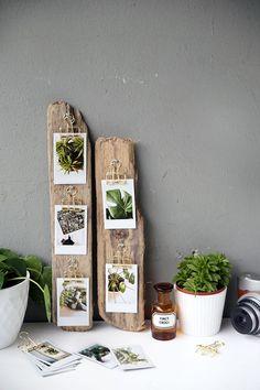 Kreative DIY-Idee zum Selbermachen: DIY-Geschenk Idee mit Sofortbildern von Instax aus Treibholz mit Upcycling selbst gemacht