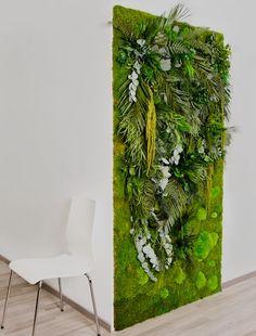 3D Pflanzenwand Zur Begrünung Von Innenraum Wänden