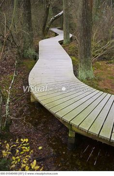 1000 Images About Winding Curved Deck On Pinterest