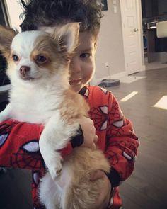 💞Paméla (maintenant Chiquita fille de Gypsy et Sammy) dans sa nouvelle famille. On me demande souvent si les chihuahuas et les enfants font bon ménage? Nos petit chihuahua socialisé fera la joie de votre famille :)💞  www.machupitouchihuahua.com