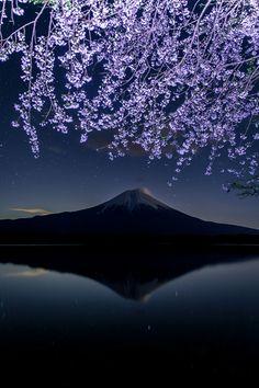 Fuji, Japan: Photo by Shiro Tamura Beautiful World, Beautiful Places, Beautiful Pictures, Image Japon, Monte Fuji Japon, Mont Fuji, Photos Voyages, Japan Photo, Belleza Natural