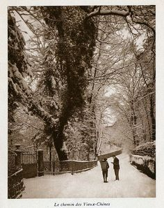 Le Chemin de Vieux Chênes Hui, Snow, Outdoor, Old Oak Tree, Tray, Outdoors, Outdoor Living, Garden, Eyes