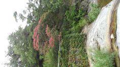 한국카메라 한국을 담다-4일차 Photo by LeeJuDot / Samsung MV800 / in 만휴정 Detail : http://www.cyworld.com/LeeJuDot/3468830