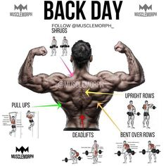 """Who's got """"back day"""" today? Personally my favorite muscle group! Any other awesome exercises for back day?"""