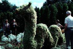 Children's Garden : finished Ogopogo - City of Vancouver Archives Outdoor Sculpture, Garden Sculpture, Topiary Garden, Loch Ness Monster, Popular Culture, Image Shows, Vancouver, It Is Finished, City