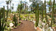 Jardim de Pedras