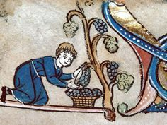 cuves à vin Médiéval - Hľadať Googlom Medieval Life, Medieval Art, Illuminated Letters, Illuminated Manuscript, Statues, European Garden, Art Antique, Italy Art, Drop Cap