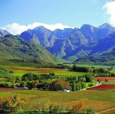 Mountain and Vineyards - Western Cape, South Africa Mama Africa, Out Of Africa, Africa Art, South Africa Safari, Cape Town South Africa, Africa Fashion, Westerns, Namibia, Beautiful Places To Visit